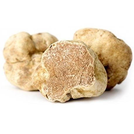 Fresh White Truffle Tuber Magnatum Pico
