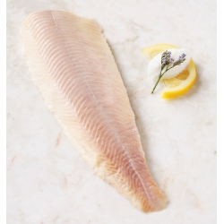 Smoked Trout (sliced)