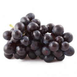 Black muscat grape