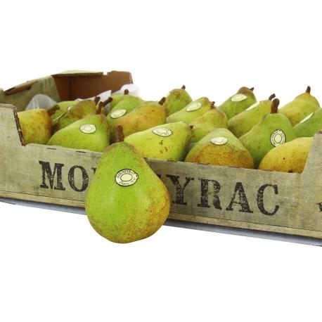 Comice pear Moumeyrac